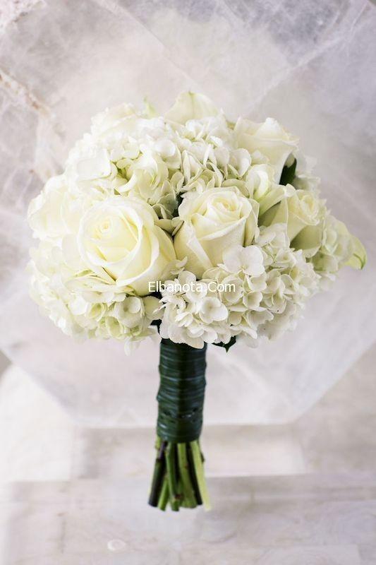 بوكية الورد للعروسة بوكيهات ورد زفاف اشكال بوكيه ورد العروسة جمال العروس عروس بنوته بنوته كافيه Wedding Bouquets White Wedding Bouquets Wedding Flowers