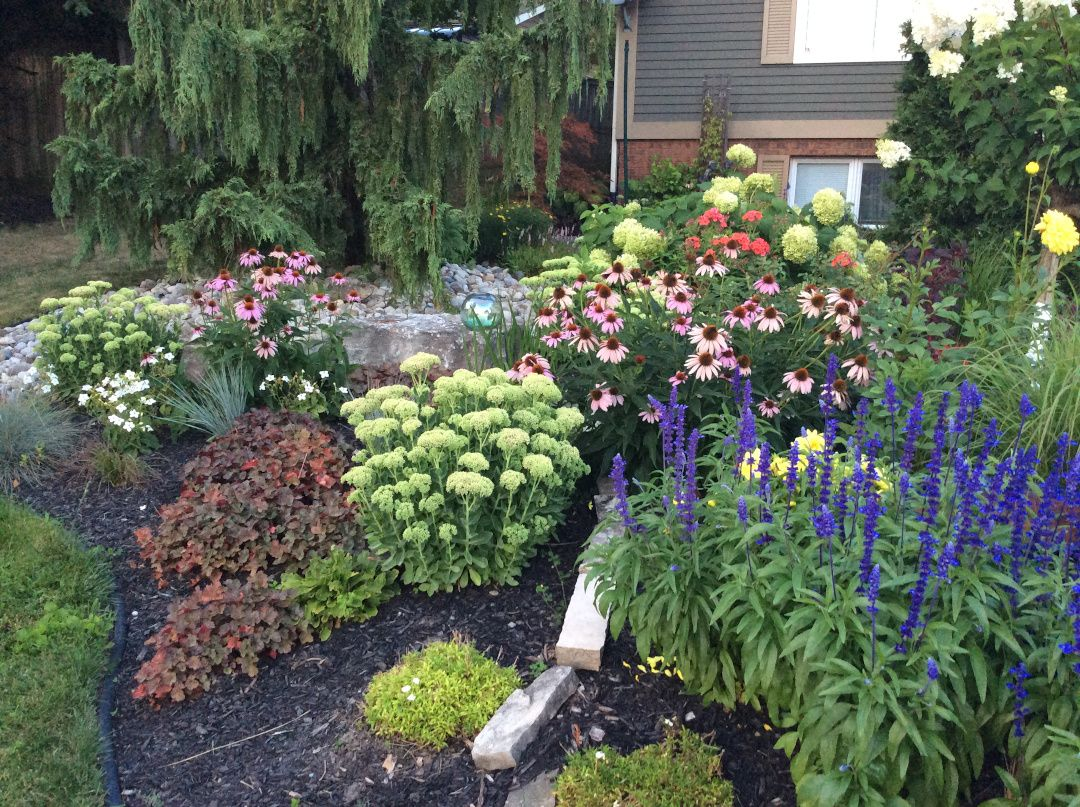 Master Gardener Plant Sale Salem Oregon