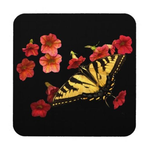 Tiger Swallowtail Butterfly on Red Flowers Coasters