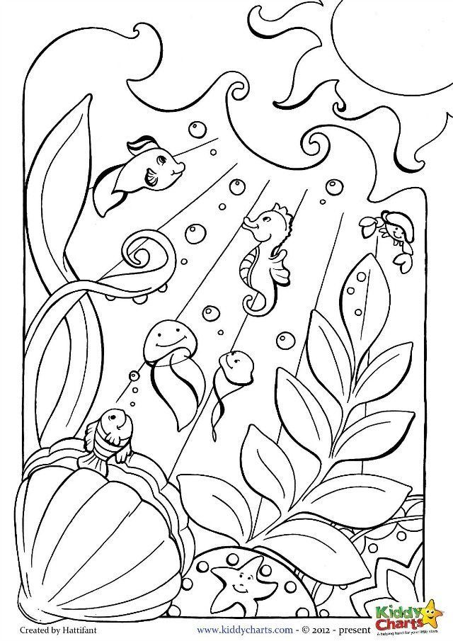 Ocean coloring pages for kids and adults Ocean coloring