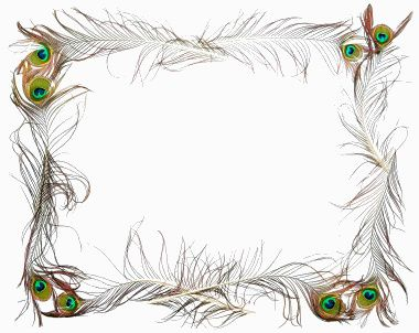 Pretty Peacock Feather Frame Clip Art Borders Feather Background Peacock Pictures