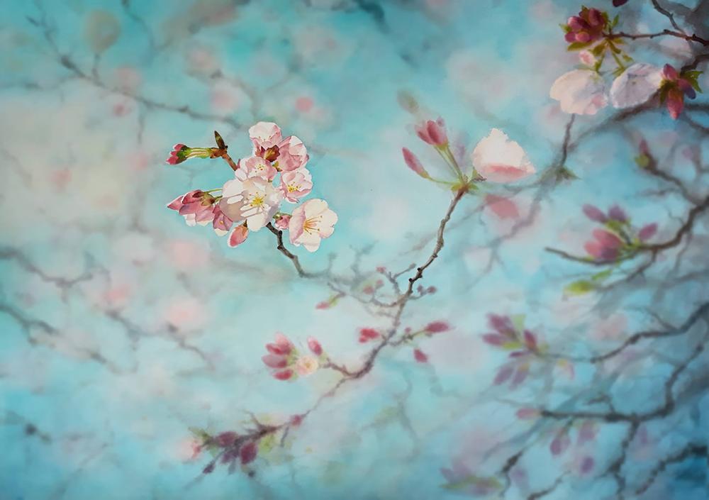 Cherry Blossoms Sakura Cherry Tree Branch Painting Cherry Blossom Watercolor Sakura Painting Cherry Blossom Art