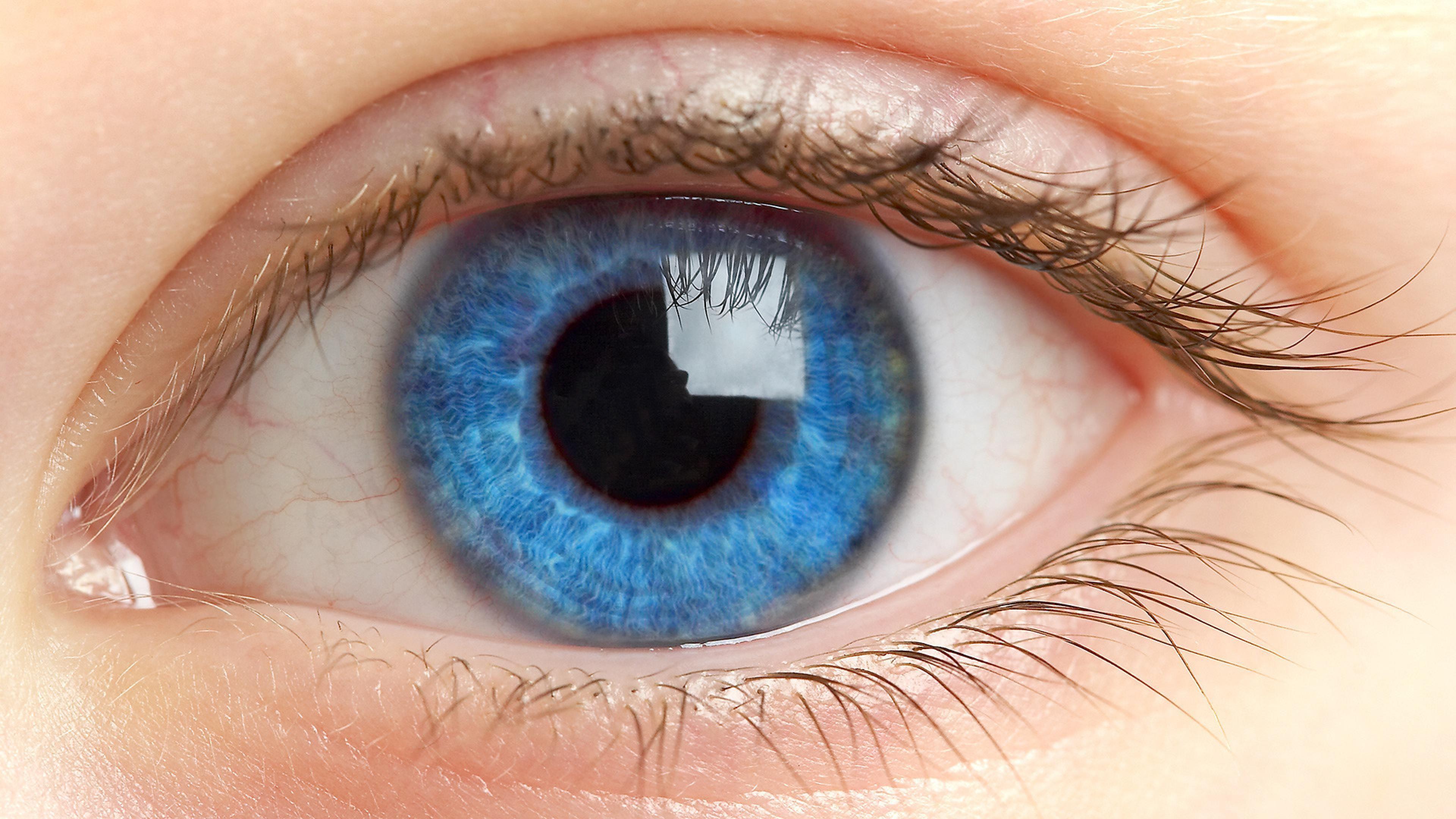 eye hd - Google Search