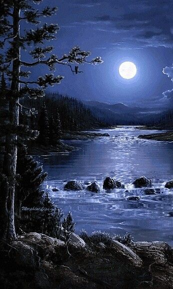A Beautiful Moonlit Night With Images Beautiful Moon Nature