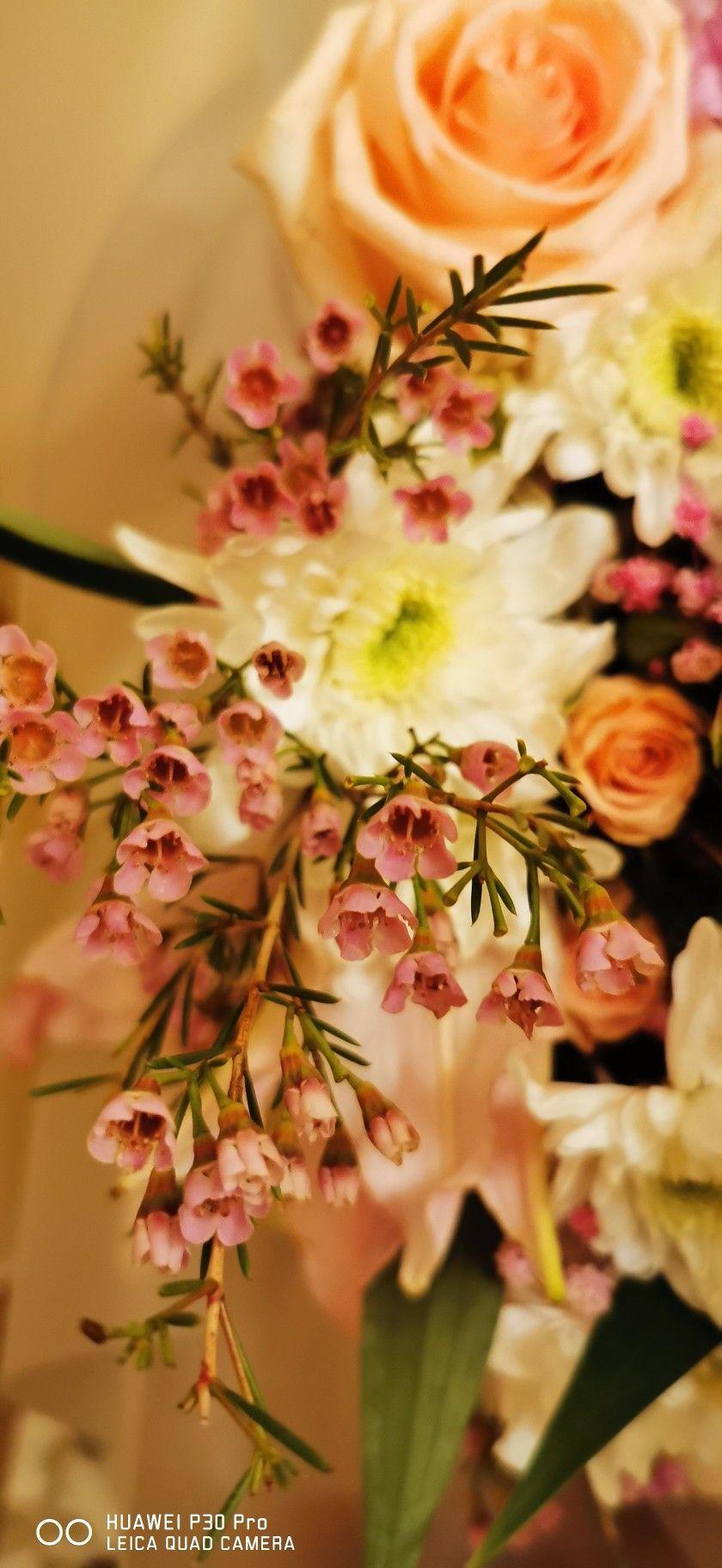 أمل الحسن تصويري Amal Alhassan تصوير جوال جمال ورد قهوة قهوتي Table Decorations Decor Home Decor