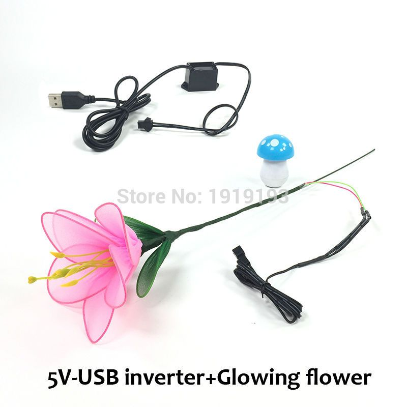 High Quality DC-5V USB Inverter+EL wire Lilium Meaningful Novelty ...
