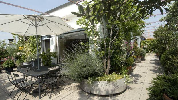 Come realizzare un giardino pensile sul terrazzo della mansarda ...