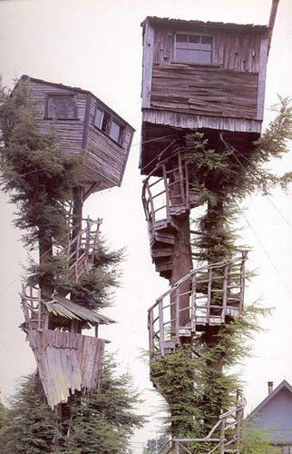 super treehouse!