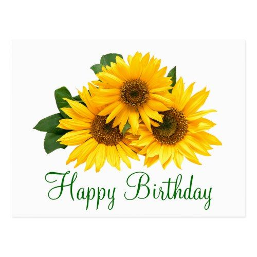 Floral Happy Birthday Sunflower Yellow Flowers Postcard Zazzle Com