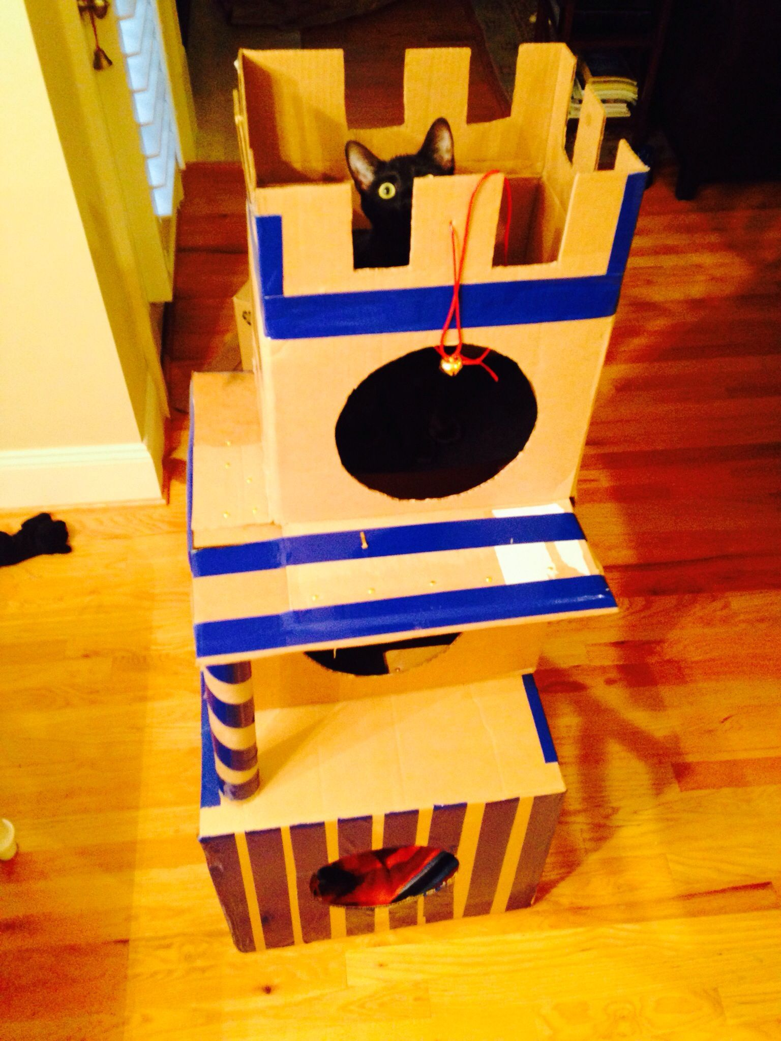 Cardboard cat castle made from cardboard boxes
