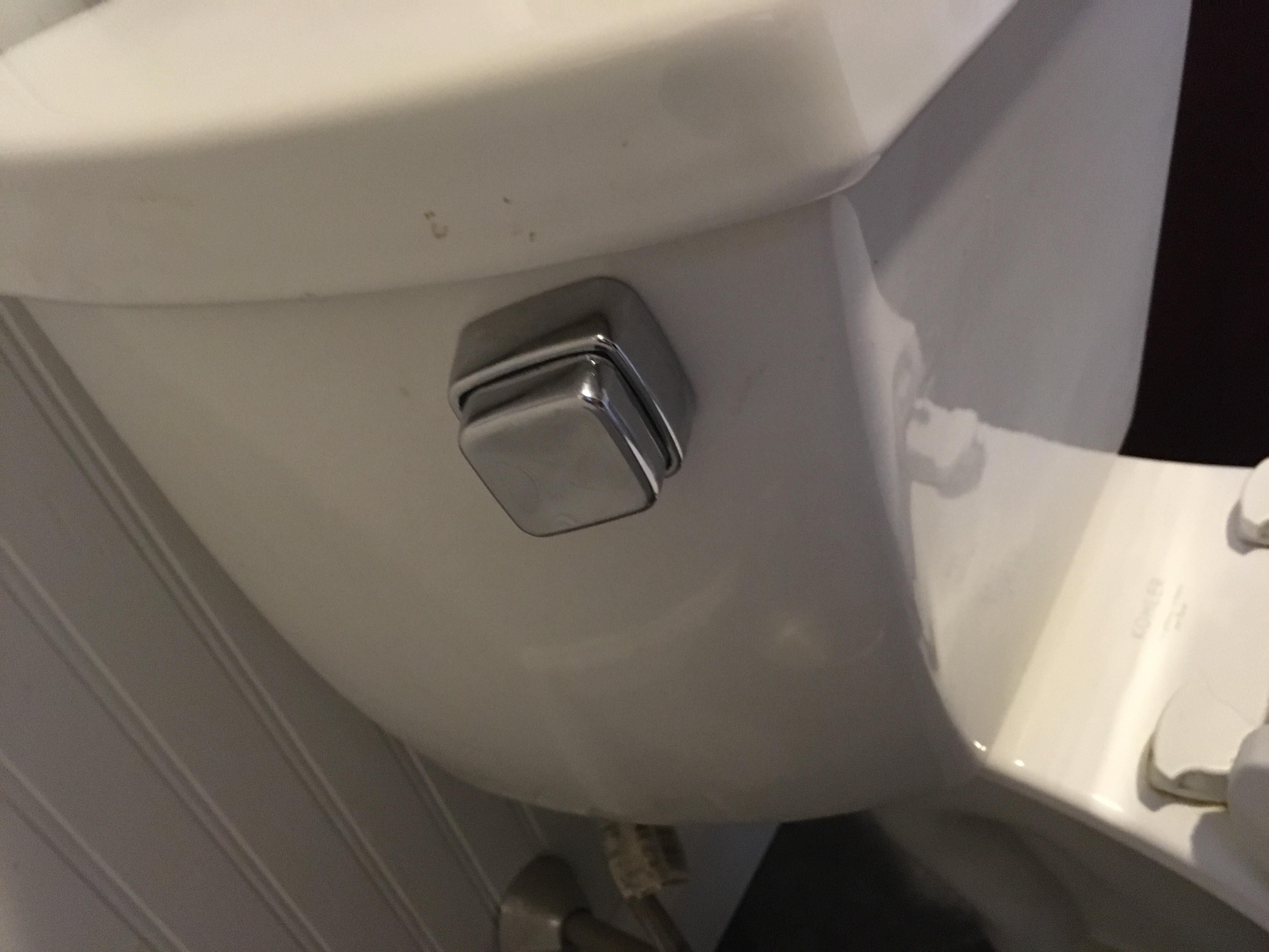 This toilet lever | Pets Funny | Pinterest