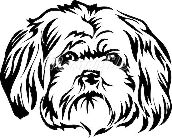 Sketches Of Dogs Faces