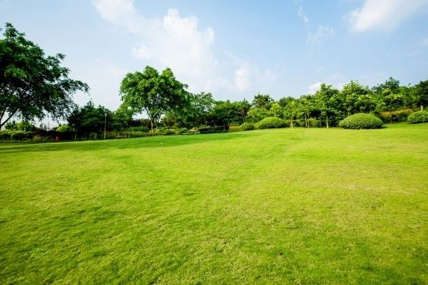 Land for sale without agents. If you are looking for more