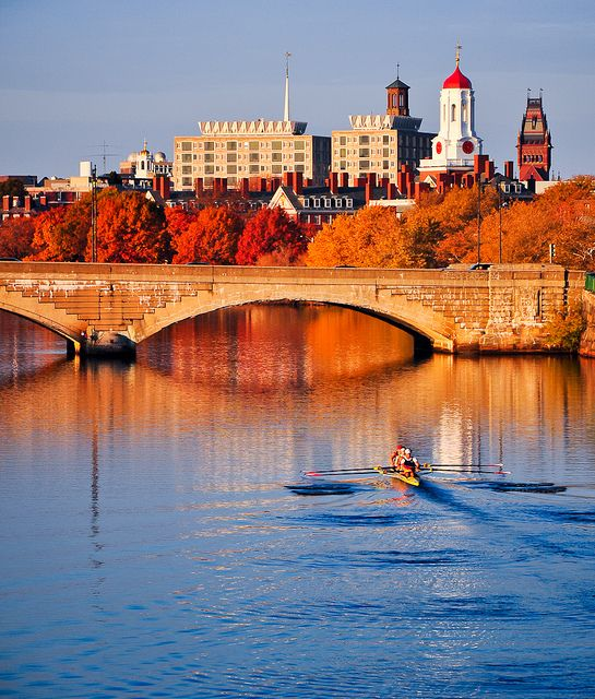 Good Places To Travel November: Cambridge, Massachusetts