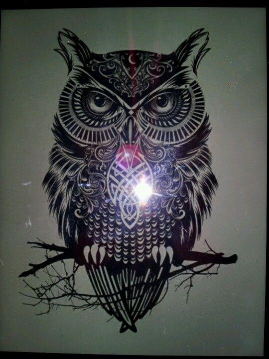 Tumblr | Owls drawing, Tribal owl tattoos, Owl tattoo