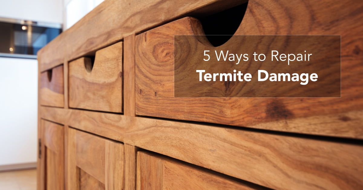 How To Keep Your Furniture Termite Free Termites Termite Damage Pooja Rooms