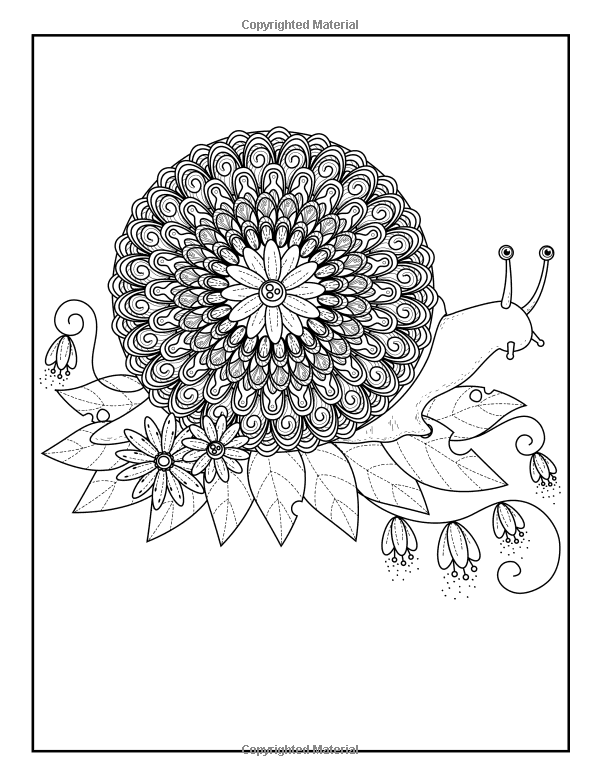 Amazon Adult Coloring Book Designs Stress Relief Garden
