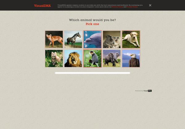 http://100things.personality.visualdna.com via @url2pin