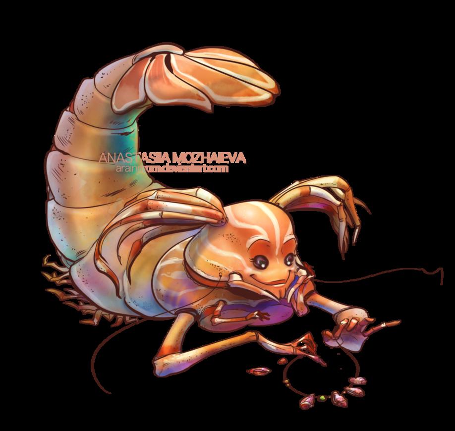 MerMay Shrimp by on