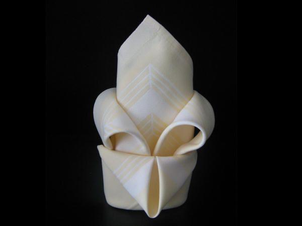 pliage serviette fleur de lys creative ideas napkin rings napkins tableware. Black Bedroom Furniture Sets. Home Design Ideas
