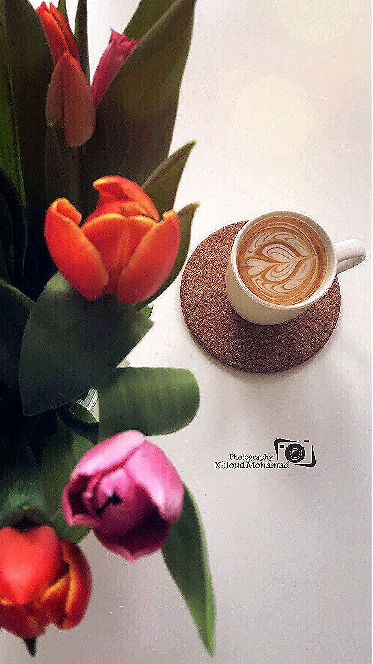 Mysnap Myfoto Mycoffee Photography Goodmorning Rose Beautiful قهود ورد زنبق دفا رواق Fruit Peach Food