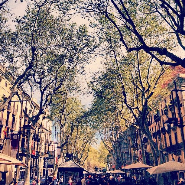 La Rambla in Barcelona, Cataluña - The most colorful street in #Barcelona, with open-air markets, historic cafes and people dressed as statues! Don't miss this walk, which ends at a beautiful pier.