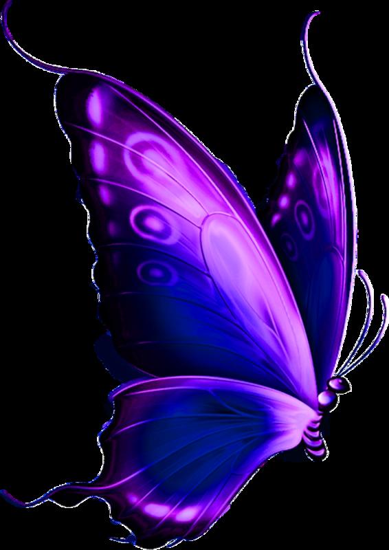 Temalariniz Icin Png Kelebek Resimleri 6 Kelebekler Kelebek