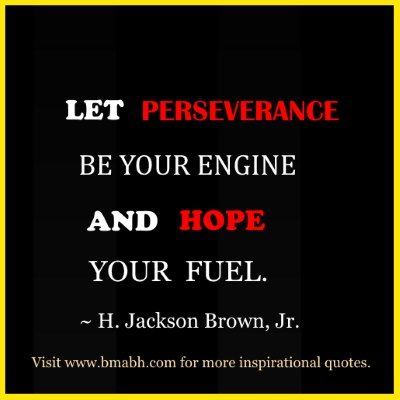 Inspirational Quotes About Perseverance Beauteous Perseverance Quotes  109 Inspiring Quotes About Perseverance