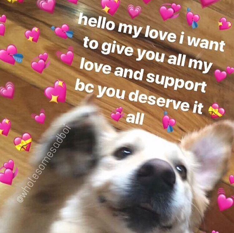 Pin By Newt On Heart Memes Cute Love Memes Cute Memes Wholesome Memes