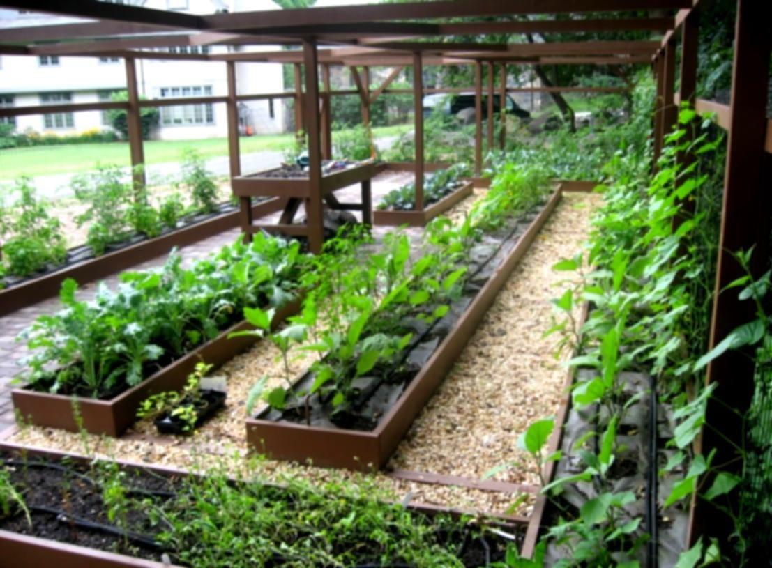 landscaping software garden pergola pictures landscape design