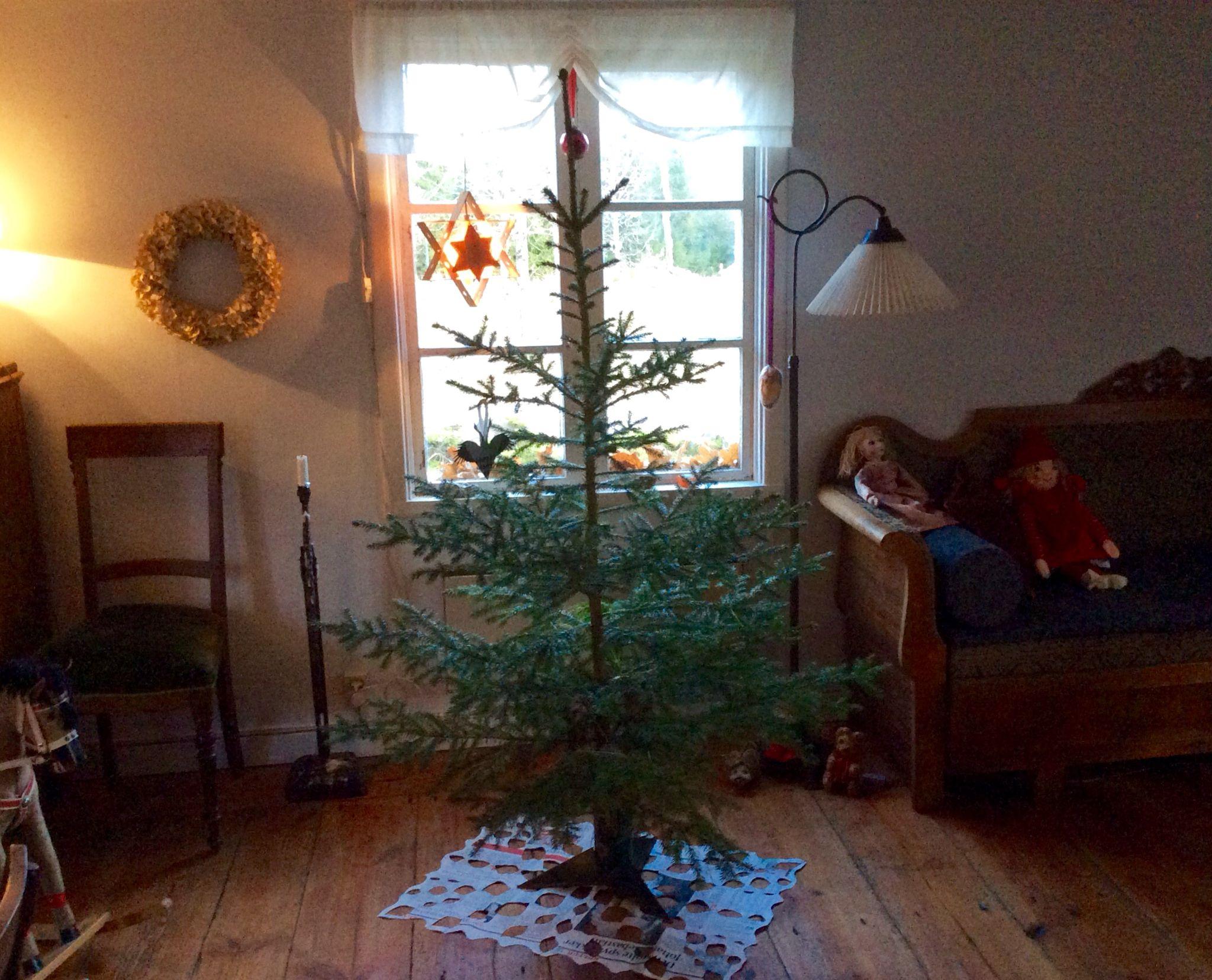 Vores eget træ