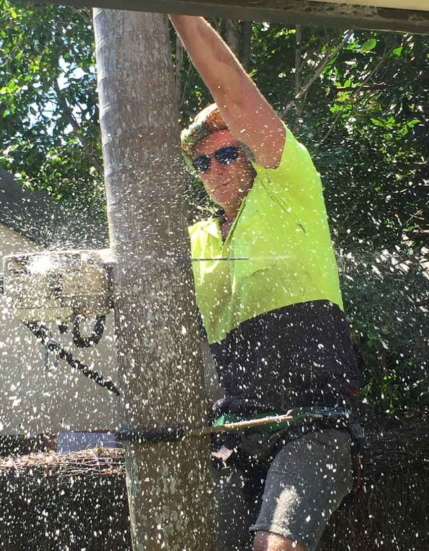 A very handy man.Tree lopping and stump removal in Sydneys