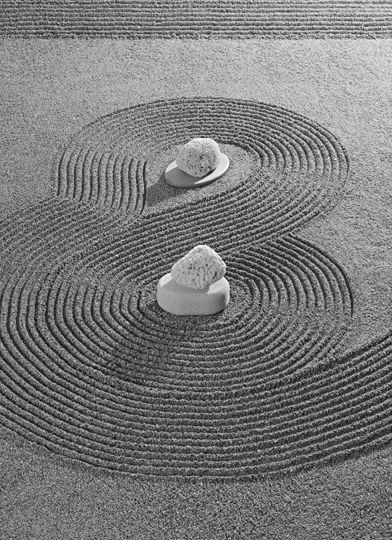 Maurice Scheltens Liesbeth Abbenes Japanese Rock Garden Mini
