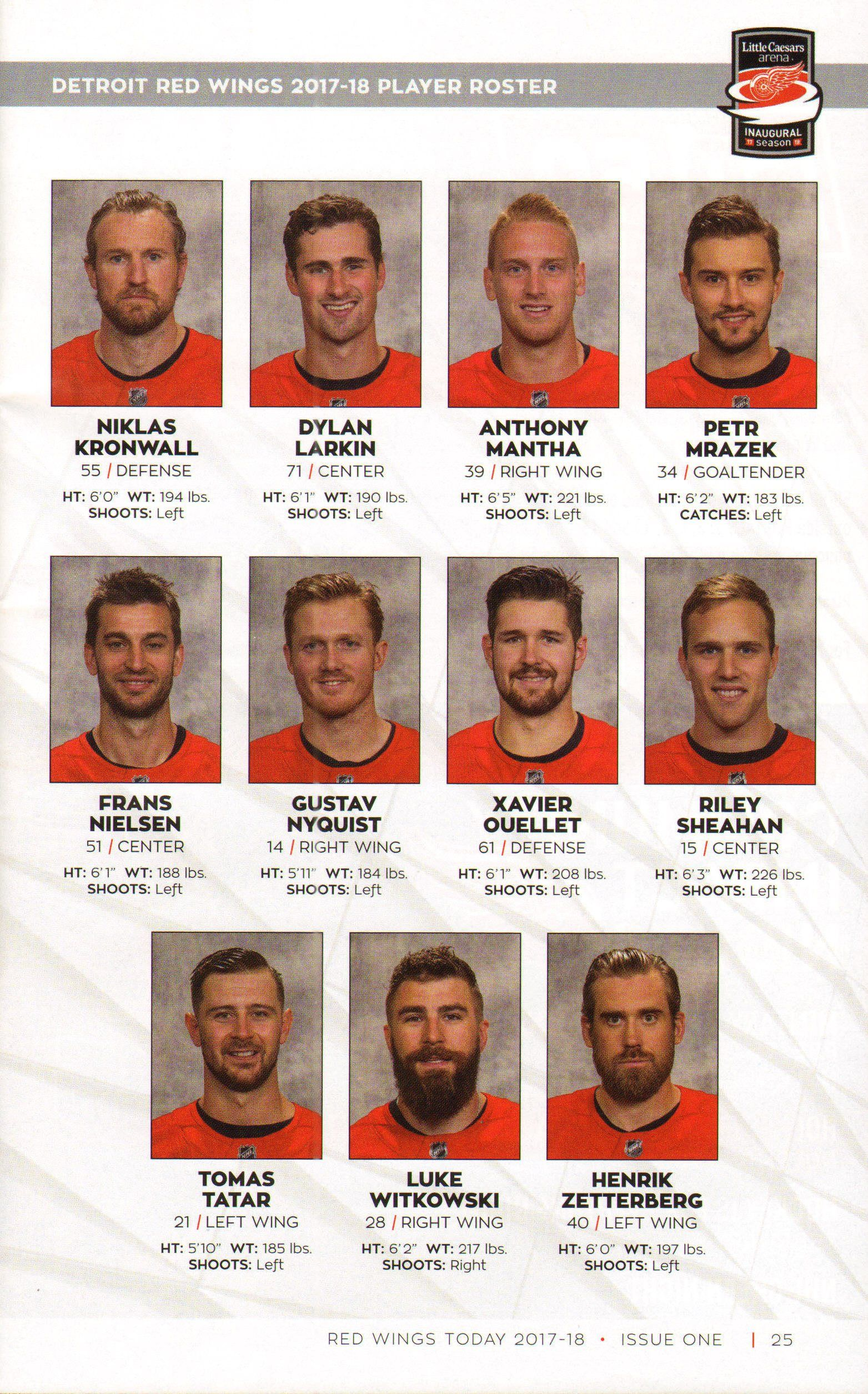 red wing nation detroit s greatest players talk about red wings hockey