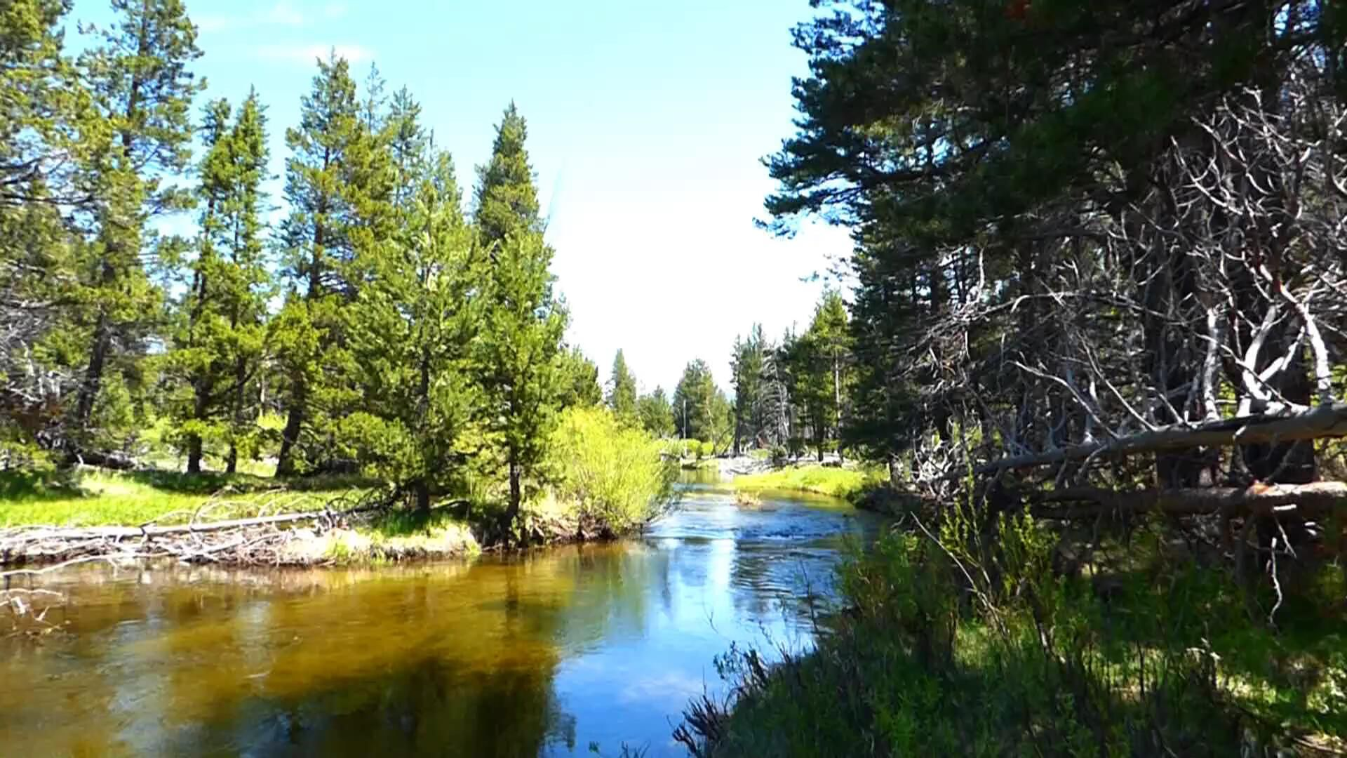 The Truckee River Flows Through The Lake Tahoe Area Then To The