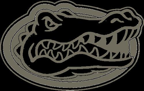 uf gator png - Google Search | Orange & Blue | Pinterest | Search
