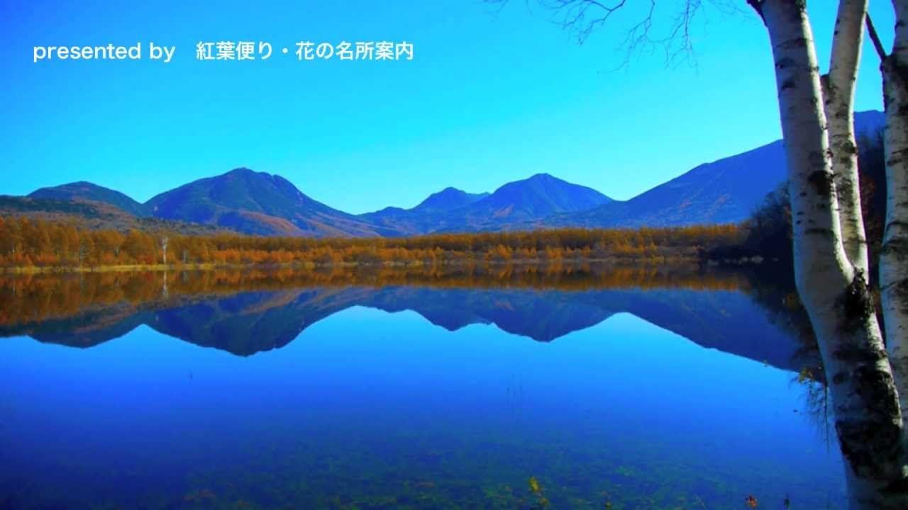 [HD]日光の紅葉・幻の湖の紅葉絶景(小田代ヶ原)Autumn in Nikko 紅葉便り