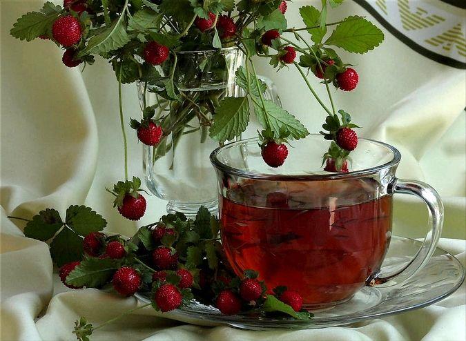 чай из земляничного листа
