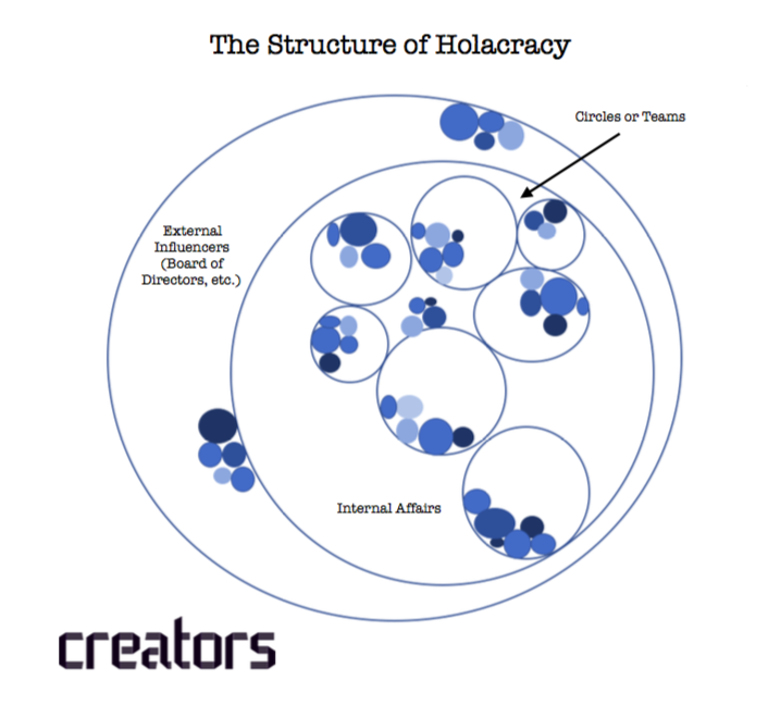 Image Result For Holacracy Organizational Structure