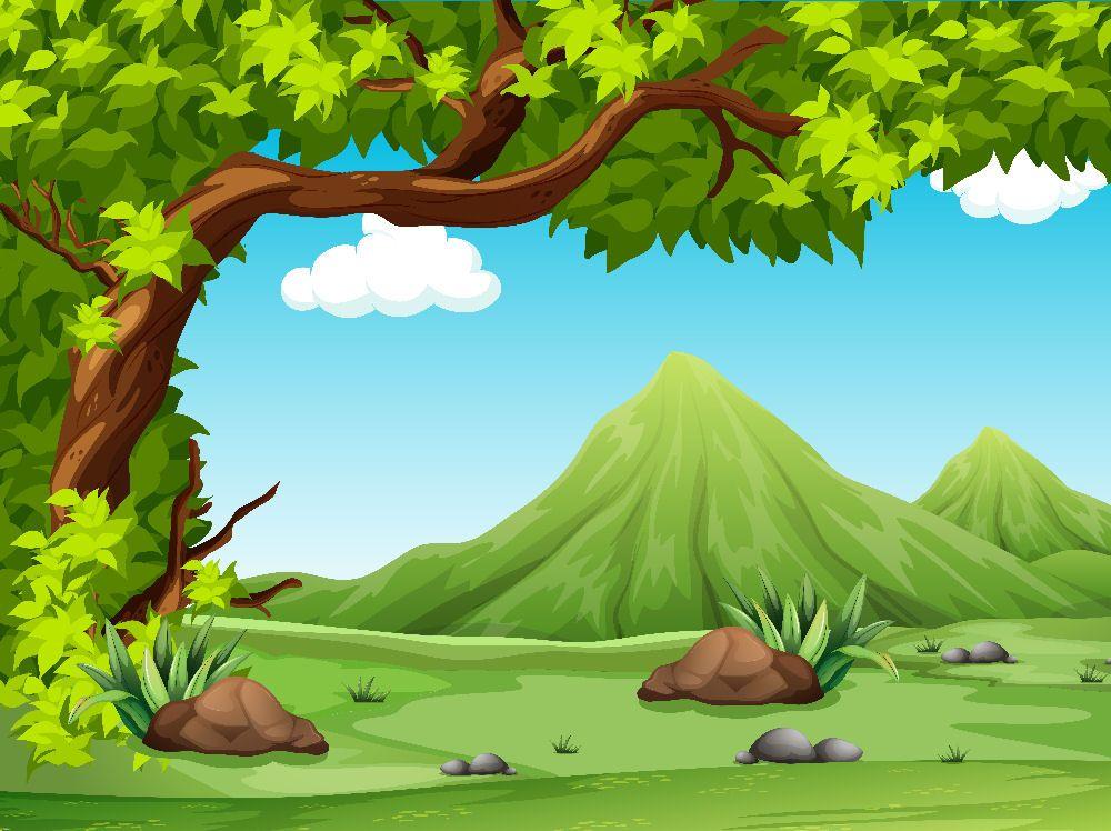Paisajes Fondos Escenarios Fondos Bosque Murales Fondos De Dibujos Animados