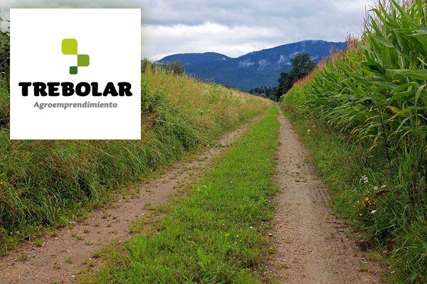 TREBOLAR, servicios integrales para el emprendimiento en el entorno rural