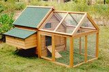 -The Plymouth Rock Penthouse  5-7 Chickens!