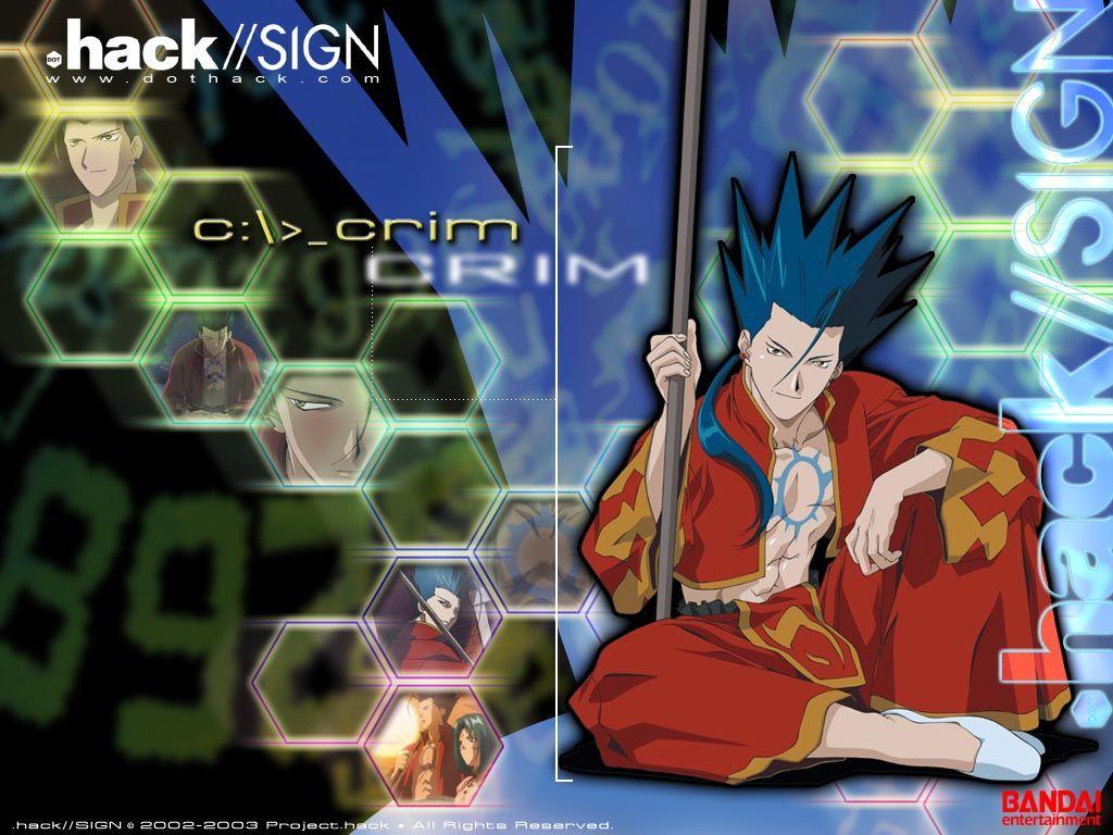 Pin by BarbaragraysonBG on .hack sign Anime, Anime