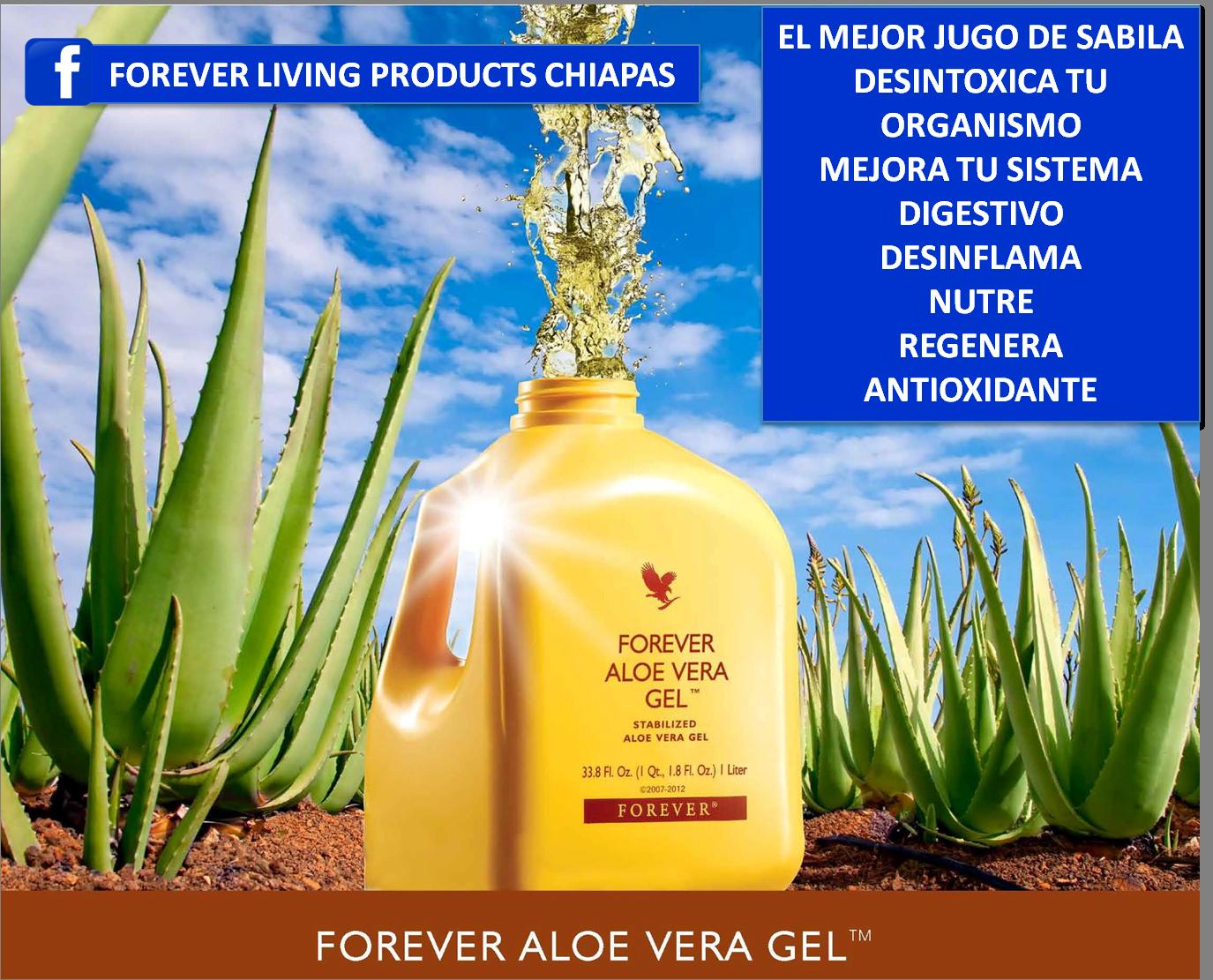 Forever Living Chiapas Productos Imperecederos Bebida De Aloe Vera Forever Aloe