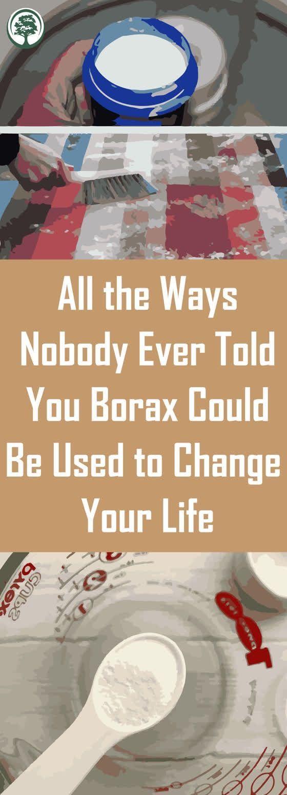 Tous les moyens que personne ne vous a jamais dit Borax pourrait être U Tous les moyens que personne ne vous a jamais dit Borax pourrait être U /