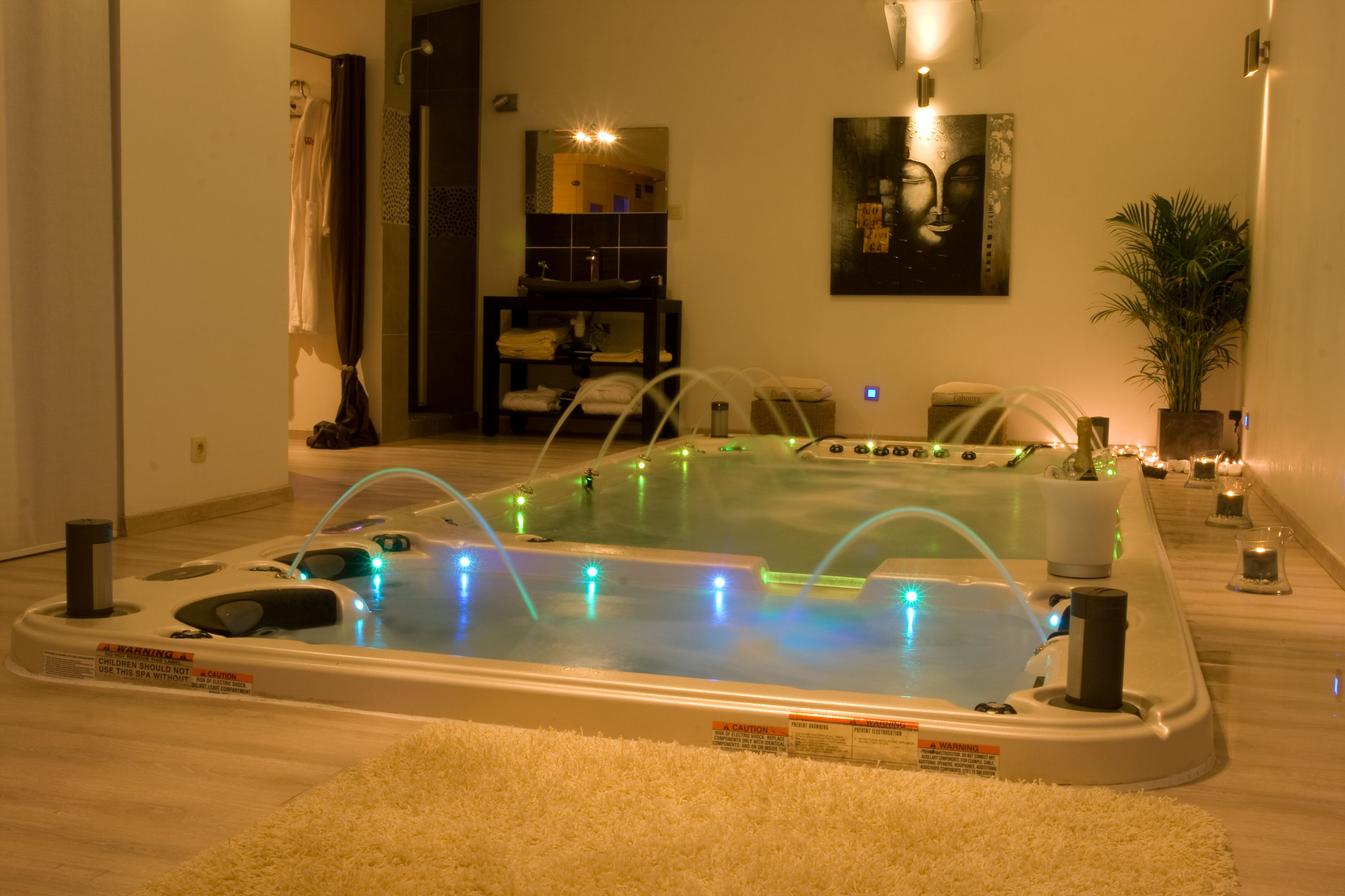 Indoor Swim Spa an awesome home addition add a sauna, shower, mini ...