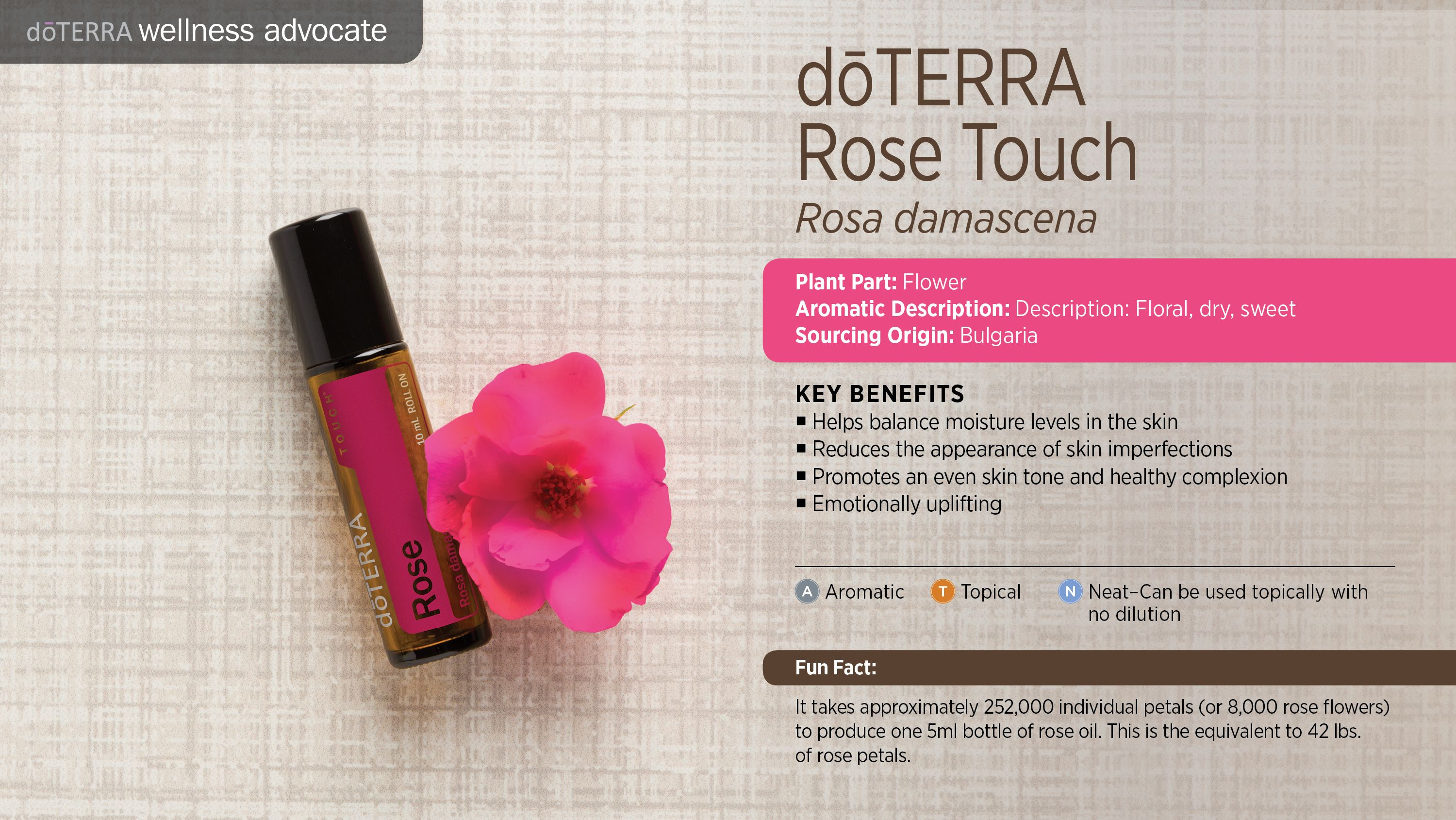 Bilderesultat for rose doterra