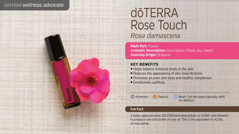 Bilderesultat for rose doterra