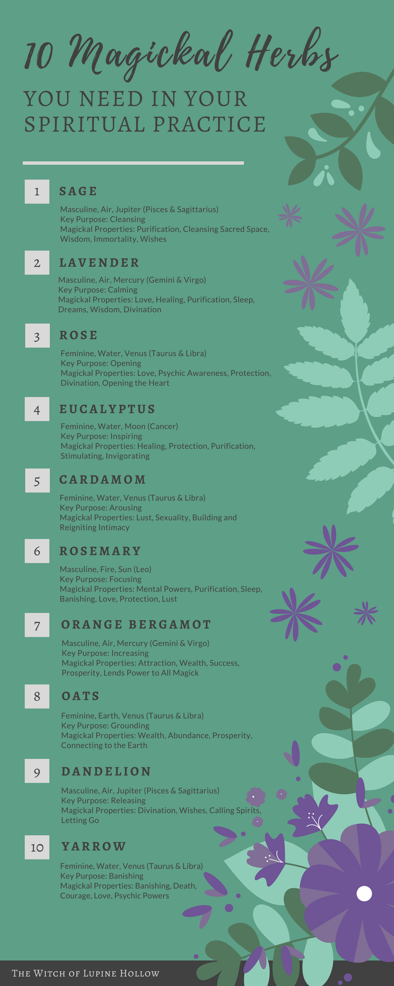 10 Magickal Herbs You Need In Your Practice - essential herbs and flowers for witchcraft