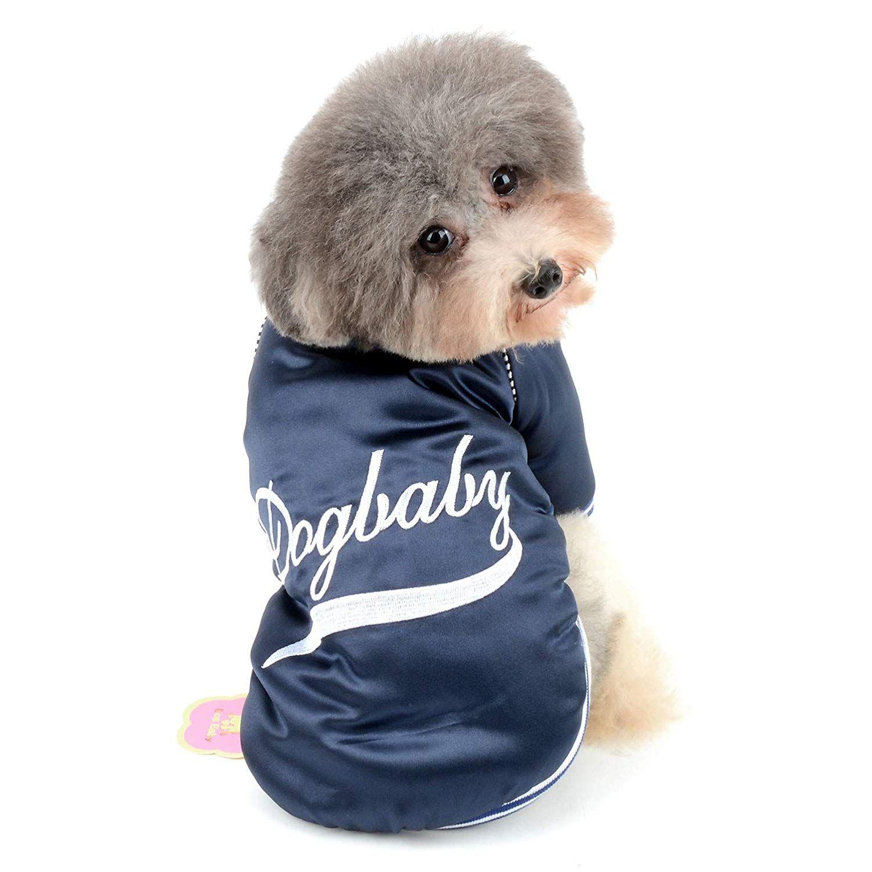 Dog and Boy Baseball (Jack the Dog)